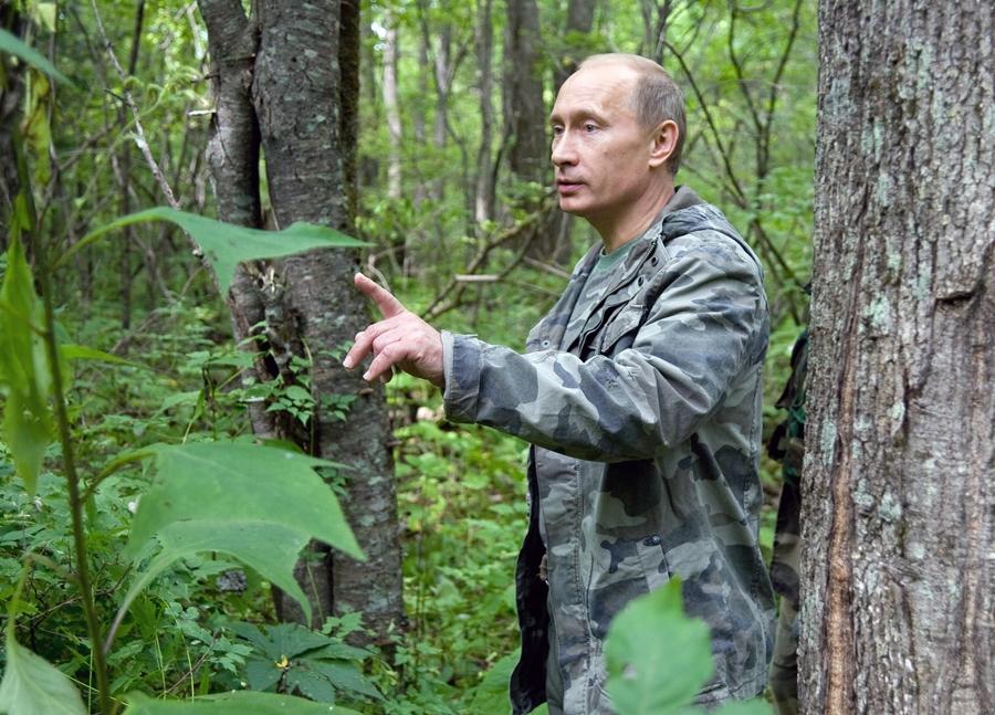 Vladimir Putin   Vladimir Putin Hunting Tiger